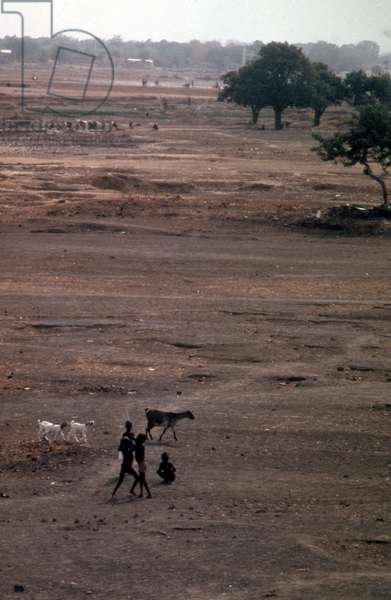 Dried up river-bed in Burkina Faso