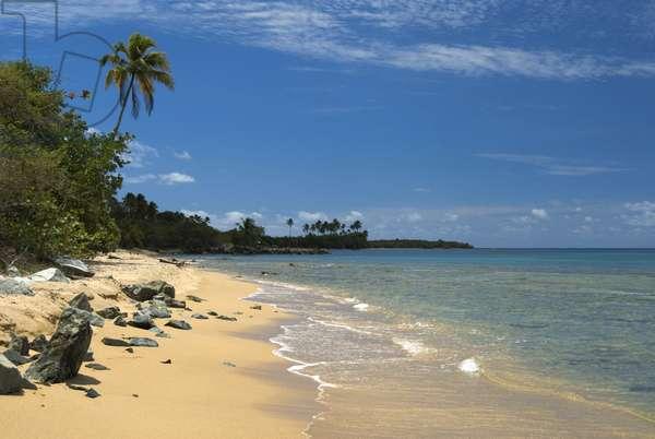 Puerto Rico, Vieques Island, Green Beach