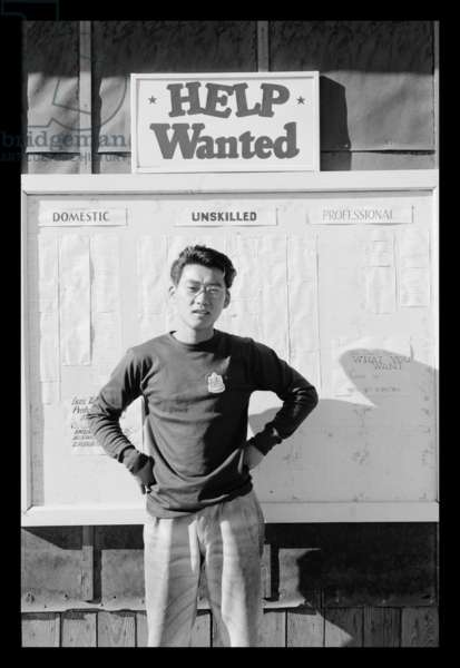 Phil Hara Overseeing the Work Offer Signs, Manzanar Relocation Center, California, 1943 (photo)