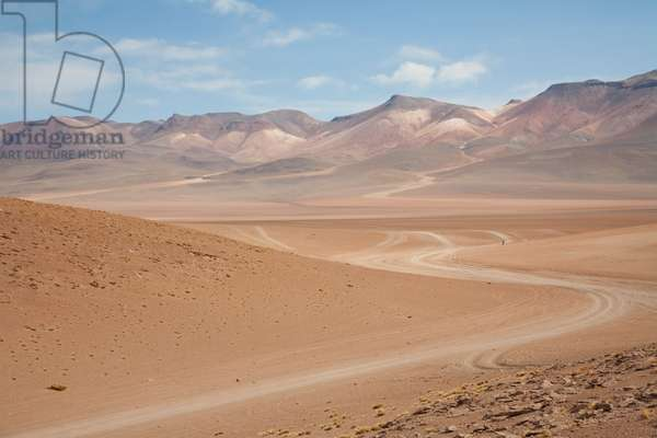 Altiplano And Volcanoes Of The Andes Cordillera (photo)