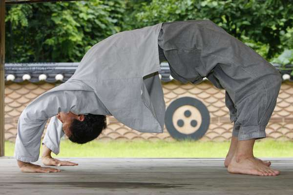 Martial art (photo)