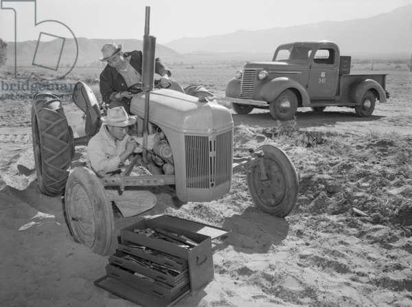 Tractor repair: driver Benji Iguchi, mechanic Henry Hanawa, Manzanar Relocation Center, California, 1943 (photo)