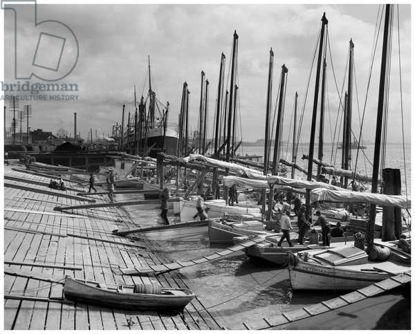 Oyster luggers, New Orleans, La (b/w photo)