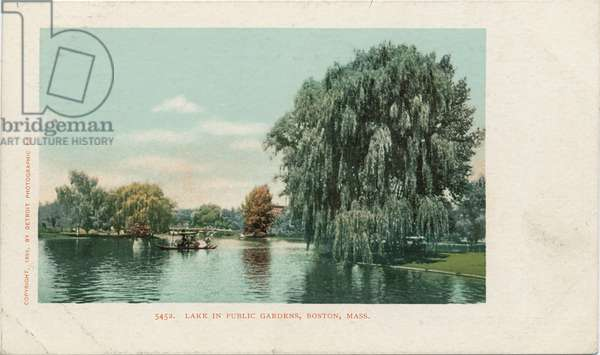 Lake in Public Gardens, Boston, Mass