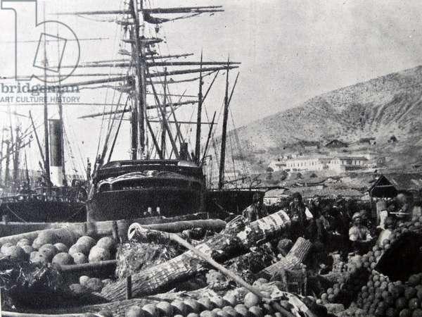 The Ordnance Wharf, Balaclava, 1855 (b/w photo)