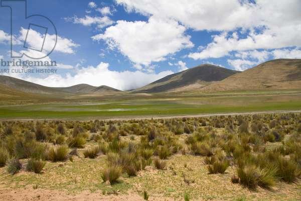 Sama National Park, Tarija, Bolivia (photo)