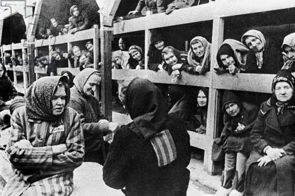 Auschwitz-Birkenau Women Nazi German Concentration Camp Prisoners