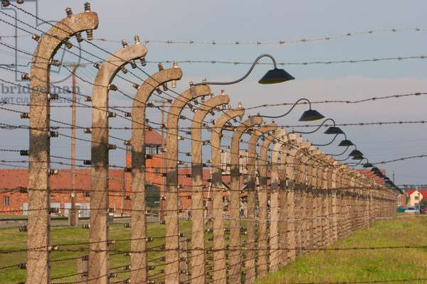 Electrified Barbed Wire Fences Separating the Sections of the Auschwitz-Birkenau Concentration Camp, Oswiecim, Malopolska, Poland (photo)