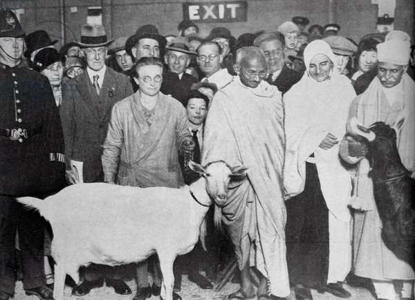 Mahatma Gandhi with his supporter, Madeleine Slade, and two goats.