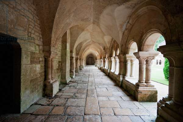 Arcade of the Cloister of the Cistercian Abbey of Fontenay, Cote D'or, France (photo)