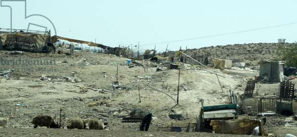 Bedouin Arab encampment in Southern Israel, 2014