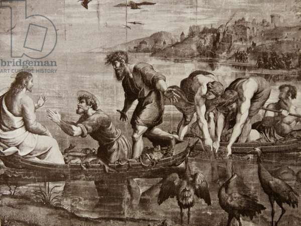 The Miraculous Draught of Fishes. cartoon by Raphael