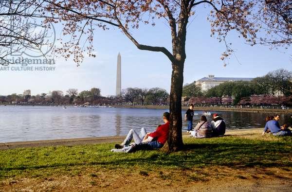 Washington Monument (photo)