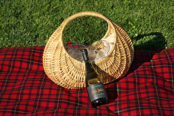 Picnic Basket and Red Picnic Blanket, Chile (photo)