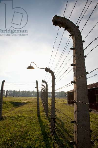 Electrified Barbed Wire Fence Separating Sections of the Auschwitz-Birkenau Concentration Camp, Oswiecim, Malopolska, Poland (photo)