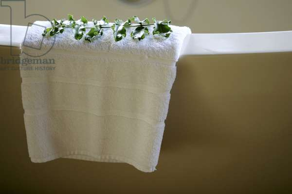 White Towel and Leaf, Tinga Legends Game Lodge, Kruger National Park, South Africa, Africa (photo)