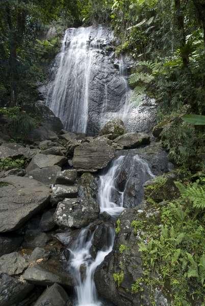 Puerto Rico, El Yunque National Forest, La Coca waterfall