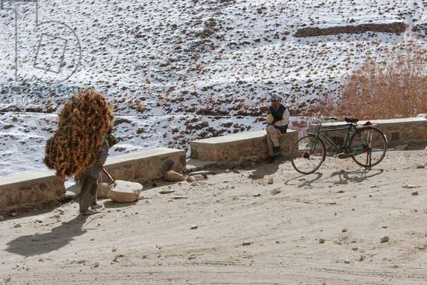 Man Carrying Brushwood and Man With Bicycle Near Zarkharid, Vardak Province, Afghanistan (photo)