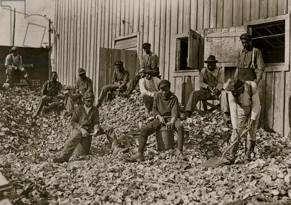 Oyster shuckers at Apalachicola, Fla. This work is carried on by many young boys during busy seasons. This is a dull year so only a few youngsters were in evidence 1909 (photo)