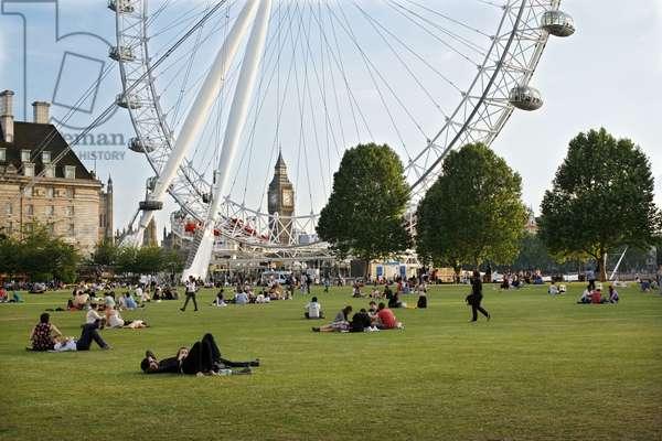 London Eye from Jubilee Gardens, London (photo)