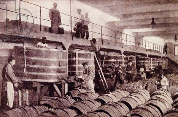 Barrels being filled with wine