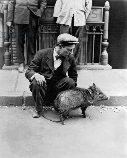 Buster Keaton With A Peccary (b/w photo)