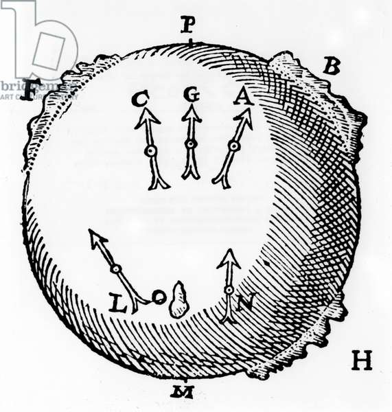 A terrella or globe-shaped magnet with lumps of iron to represent mountains and showing the north-seeking property of a magnetic needle. From William Gilbert De Magnete, London, 1600