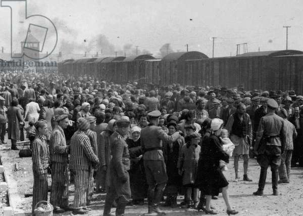Arrival at Auschwitz by Train (b/w photo)