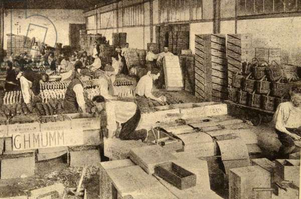 Print of a packing house in Champagne, France