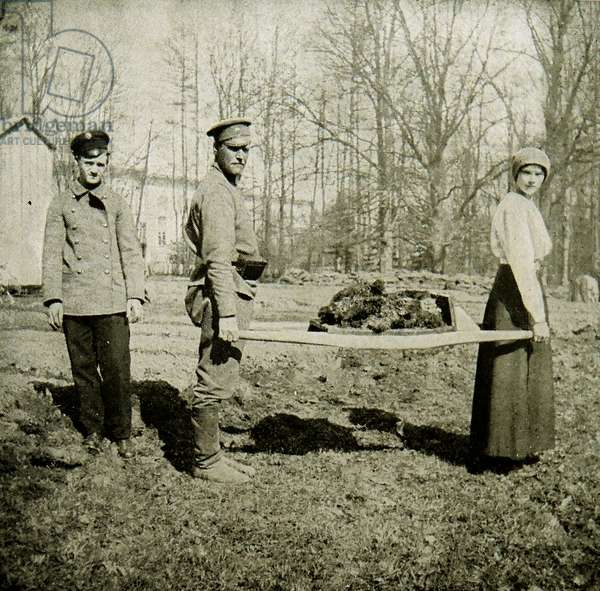 The Grand Duchess Tatiana carrying a litter of sod