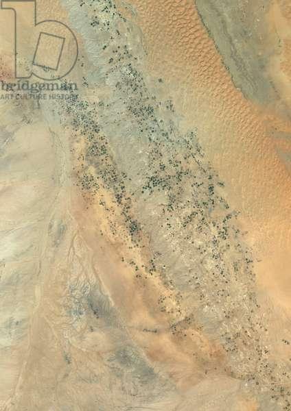 Agriculture In The Desert, Riyadh Province, Saudi Arabia, True Colour Satellite Image