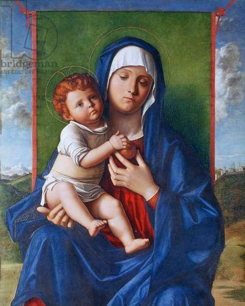 The Virgin and Child, 1480-90 (oil on poplar)