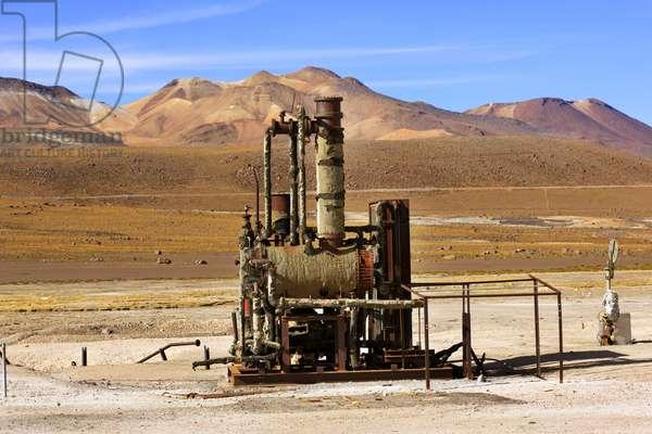 Atacama Desert Relic (photo)