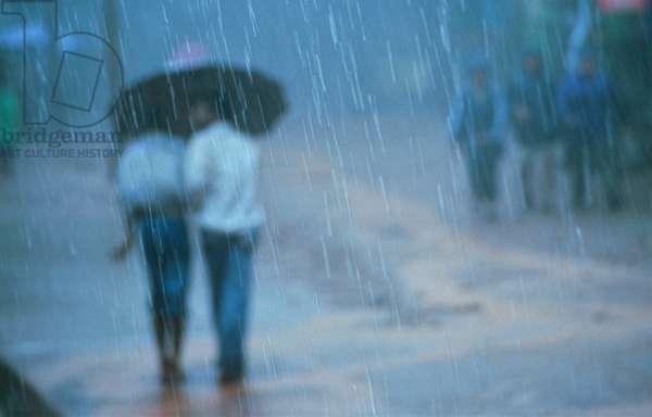 Monsoon rain in Matheran, Maharashtra, India.  (photo)