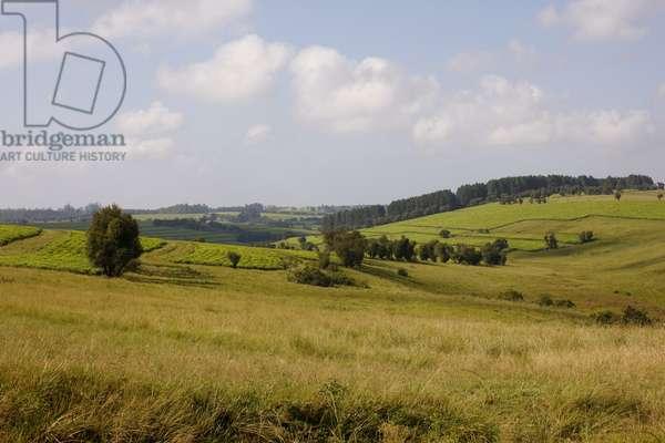 Transkei Landscape (photo)