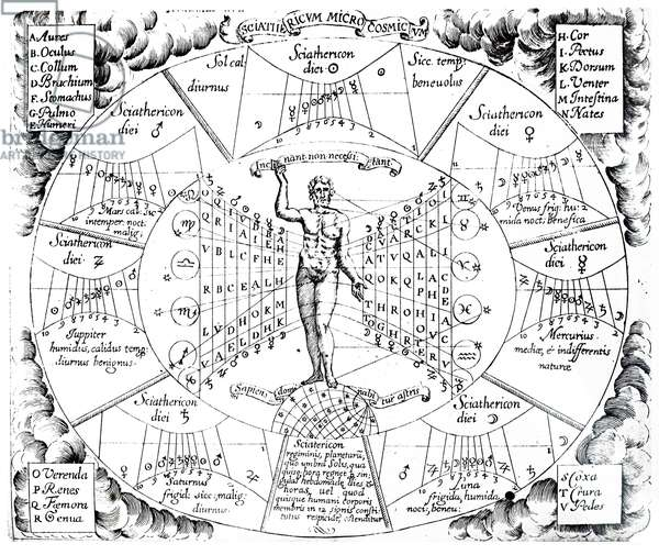 Astrological chart showing the influences of the planets and constellations on the organs of the body, 17th century