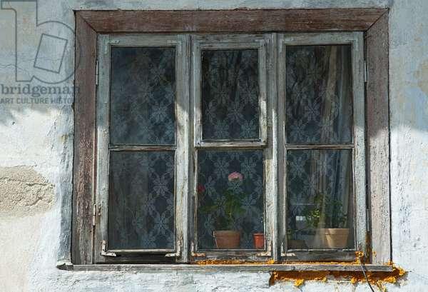 Window, Trakai, Lithuania (photo)