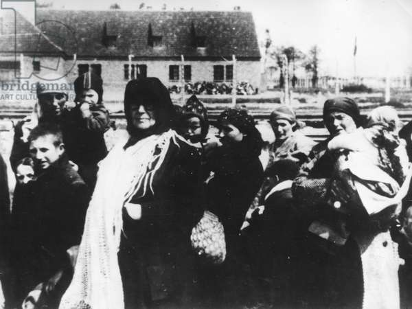Polish Peasant Women and Children from the Zamosc District Arriving at Auschwitz Concentration (Death) Camp, Poland, World War 2, Holocaust.