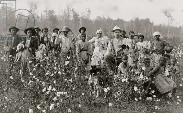 The cotton planter and his pickers 1908 (photo)