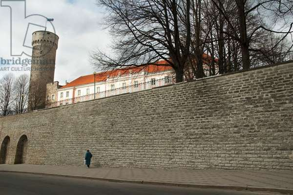 Toompea Castle and Tall Hermann Tower in Tallinn, Estonia (photo)