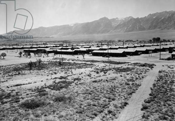 Manzanar from guard tower, summer heat, 1943 (photo)