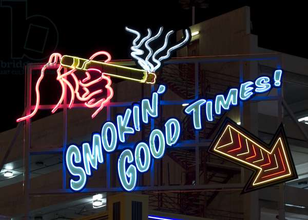 Old Motels and Historic Neon Art, Las Vegas, Nevada 2006 (photo)
