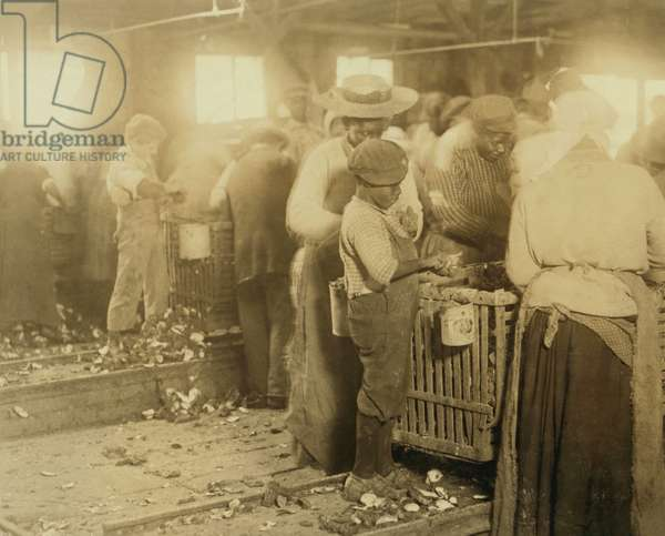 African American Children in Oyster Shucking Factory 1913 (photo)