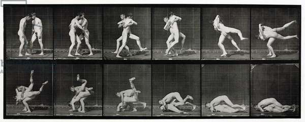Time-lapse photographs of two men wrestling, 1872-1885