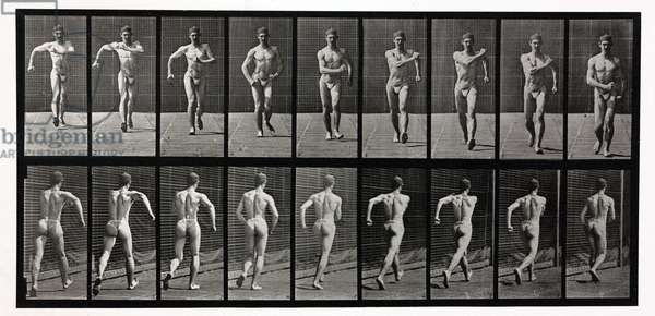 Time-lapse photographs of a man walking, 1872-1885
