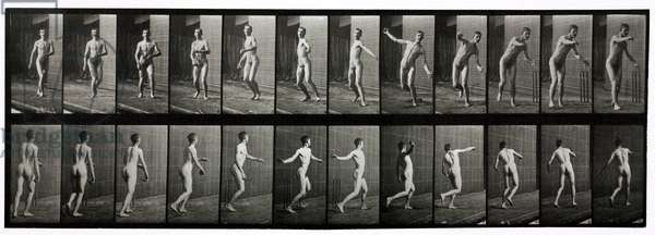 Time-lapse photographs of a man throwing a cricket ball, 1872-1885