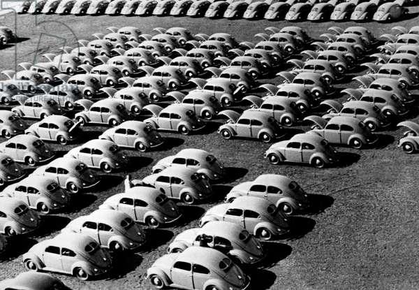 German Cars Back Motor, 1954 (b/w photo)