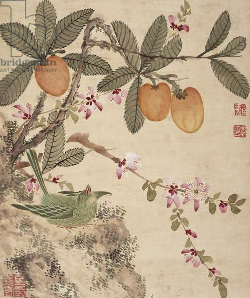 One of a series of paintings of birds and fruit, late 19th century (w/c on paper)