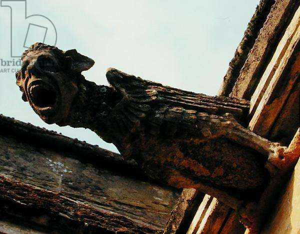 A gargoyle on the North front (stone)