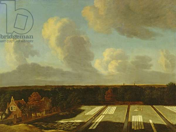 Bleaching Ground near Haarlem (oil on canvas)